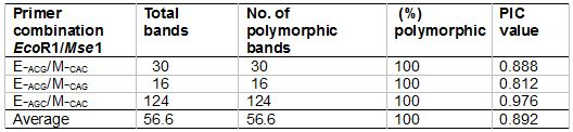 Table 3: AFLP primer combinations, total numbers of fragments generated by each primer set, numbers of polymorphic fragments, percentages of polymorphic fragments and polymorphic information content (PIC) values used in the study of 62 superior accessions of L. pumila.